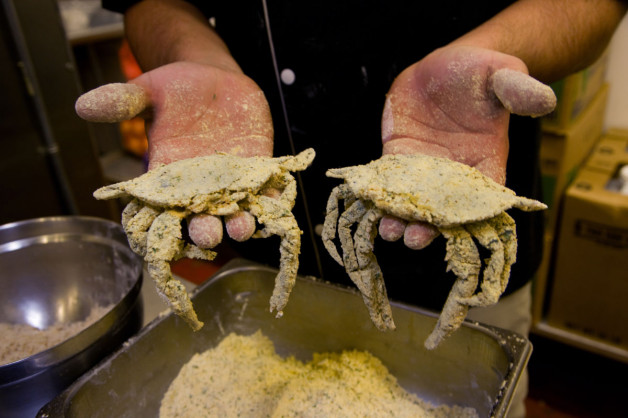 What Goes Into a Blue Moon Soft Shell Crab